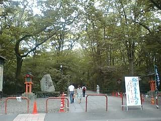 PIC_0240-tadasu.jpg
