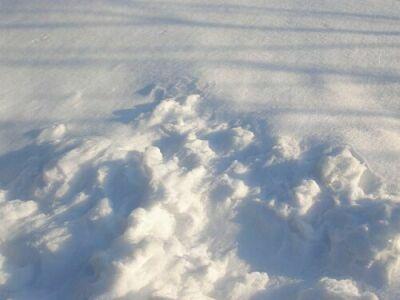DSC00005-snow.jpg