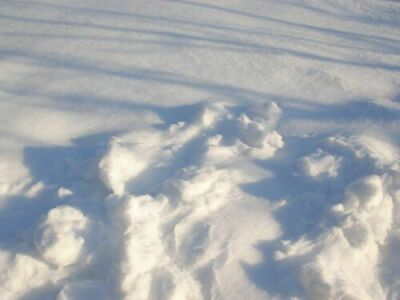 DSC00006-snow.jpg