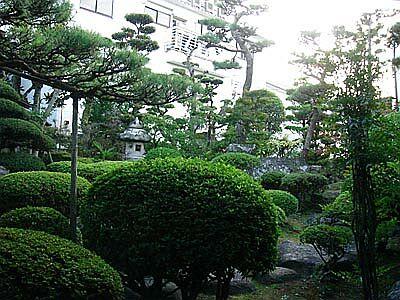 DSC03648_garden.jpg