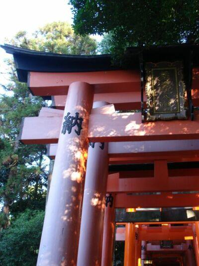 fushimi-torii2.jpg