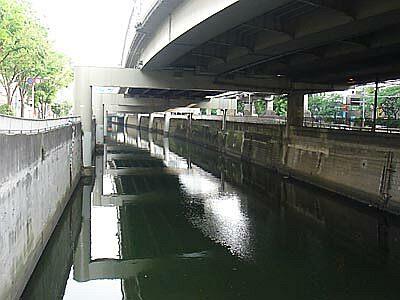 DSC06516_bridge.jpg