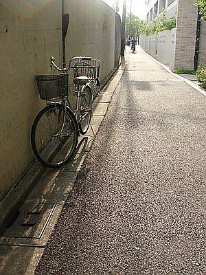 DSC06517_cycle.jpg