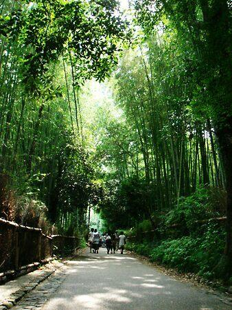 DSC07459_arashiyama.jpg