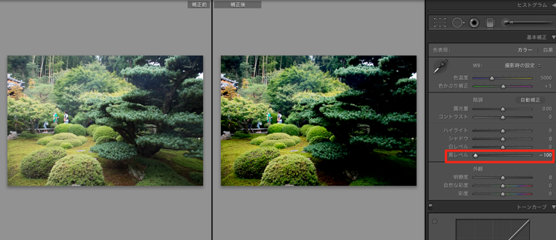 Lightroom 15