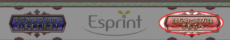 デジカメプリントのエスプリ 1
