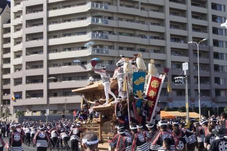 朝から晩までたっぷり一日「岸和田だんじり祭り」を楽しむコツ