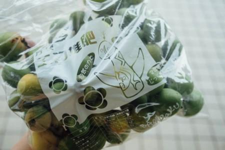 万博公園産の梅の実が販売されていたので3kg分購入してきました